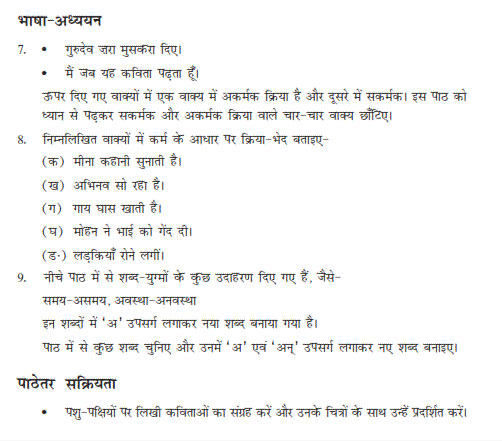 NCERT Hindi Question Paper (Class-9)