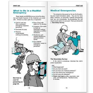 First Aid Awareness Raising And Demonstration Essay